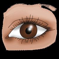 Как нарисовать глаза