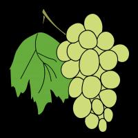 Как нарисовать виноград