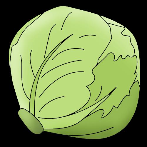 Как нарисовать капусту
