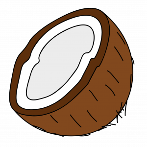 Как нарисовать кокос поэтапно